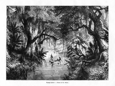 River in Haiti, 19th Century