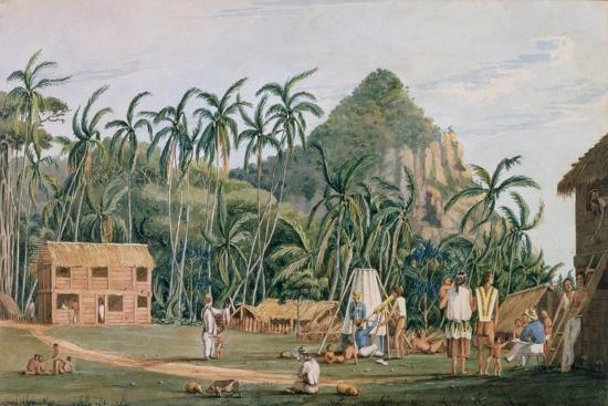 T1231 a View of the Village at Pitcairn Island, December 1825-Admiral William Henry Smyth-Giclee Print
