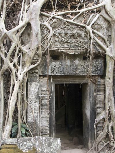 Ta Prohm, Angkor Archaeological Park, UNESCO World Heritage Site, Siem Reap, Cambodia, Indochina-Richard Maschmeyer-Photographic Print