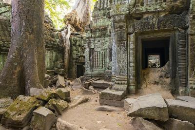 Ta Prohm Temple (Rajavihara), Angkor, UNESCO World Heritage Site, Siem Reap Province, Cambodia-Jason Langley-Photographic Print