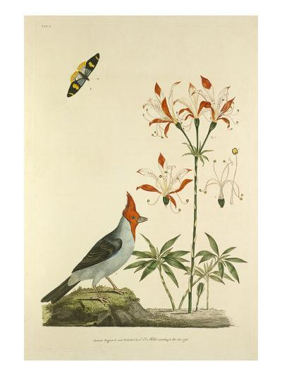 Tab II-John Frederick Miller-Giclee Print