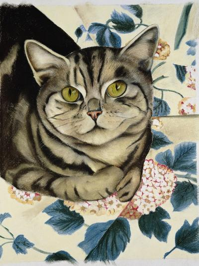 Tabby Cat-Anne Robinson-Giclee Print