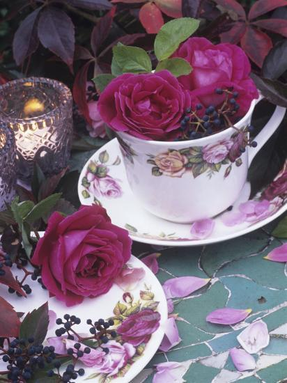 Table and Tableware Decorated with Roses-Elke Borkowski-Photographic Print