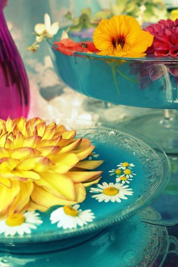 Table Decoration, Coloured Blossoms and Water Bowl-Alaya Gadeh-Photographic Print