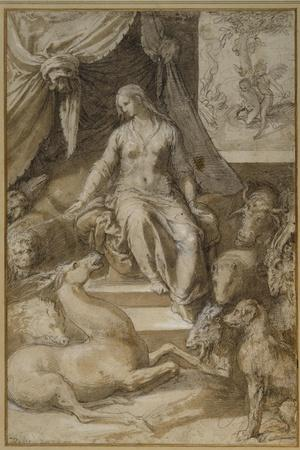 Circe Seated, the Bewitched Argonauts Transmogrified
