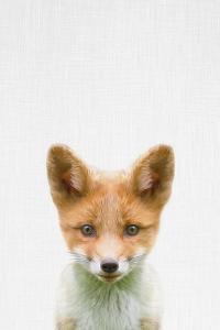 Baby Fox by Tai Prints