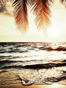 Night Beach by Tai Prints