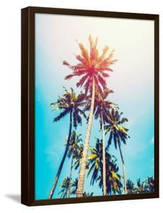 Palms in the Sun by Tai Prints