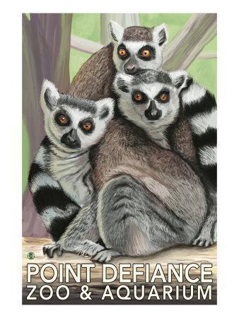 https://imgc.artprintimages.com/img/print/tailed-lemurs-point-defiance-zoo-and-aquarium_u-l-q1gob060.jpg?p=0