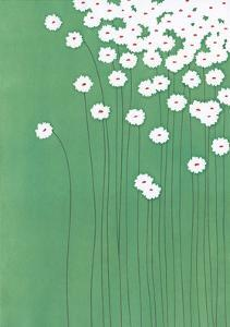 Field Daisies by Takashi Sakai
