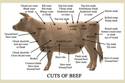 Cuts of Beef by Take 27 LTD