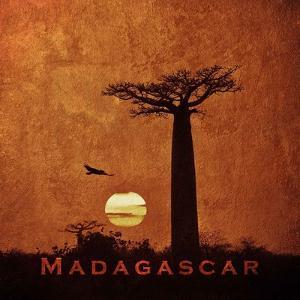 Vintage Baobab Trees at Sunset in Madagascar, Africa by Take Me Away