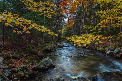 Take Me To The River, Autumn Maine Acadia National Park-Vincent James-Photographic Print