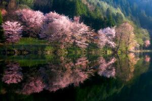 Another World by Takeshi Mitamura