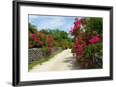 Taketomi Island in Okinawa, Japan-motive56-Framed Photographic Print