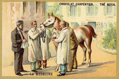 Taking Blood from a Horse--Giclee Print