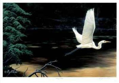 Taking Flight-Cyril Cox-Limited Edition