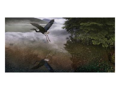 Taking Flight-Steve Hunziker-Art Print