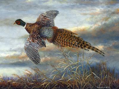 Taking Flight-Carolyn Mock-Premium Giclee Print