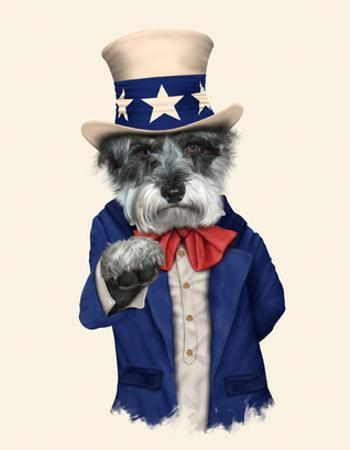 Uncle Sam (Pets Rock) by Takkoda