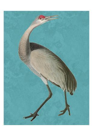 https://imgc.artprintimages.com/img/print/tall-bird-2_u-l-f7u0000.jpg?p=0
