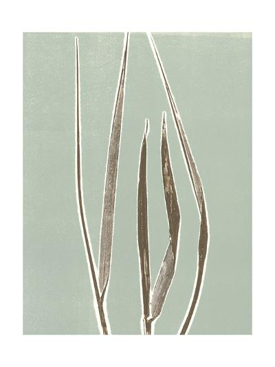 Tall Grass 1-Mary Margaret Briggs-Premium Giclee Print