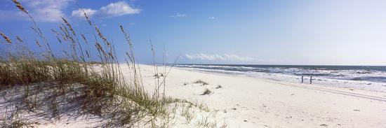 Tall Grass on the Beach, Perdido Key Area, Gulf Islands National Seashore, Pensacola, Florida, USA--Photographic Print