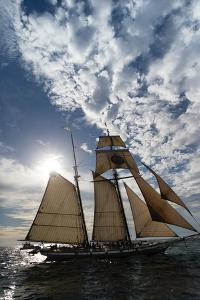 Tall Ship in the Pacific Ocean, Dana Point Harbor, Dana Point, Orange County, California, USA