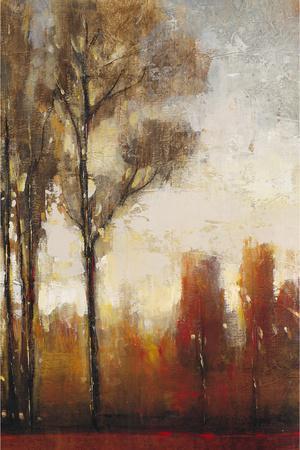 https://imgc.artprintimages.com/img/print/tall-trees-ii_u-l-q1bh4td0.jpg?p=0