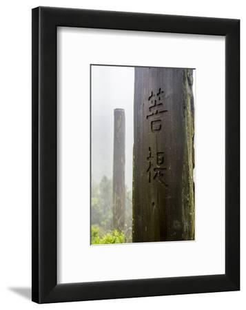Tall wooden steles at the Wisdom Path, Lantau Island, Hong Kong, China.-Michael DeFreitas-Framed Photographic Print
