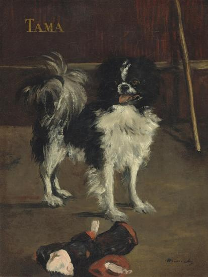 Tama, the Japanese Dog, c.1875-Edouard Manet-Giclee Print