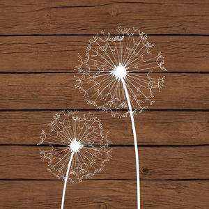 Dandelion Brown Wood 3 by Tamara Robertson