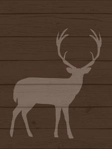 Deer 1 by Tamara Robertson