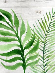 Banana Leaf II by Tamara Robinson