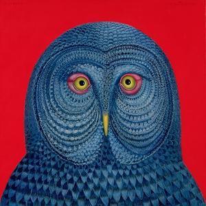 Blue Owl, 1995 by Tamas Galambos
