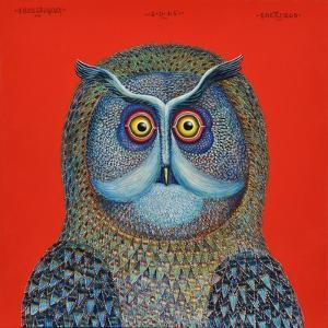 Long-Eared Owl, 2015 by Tamas Galambos
