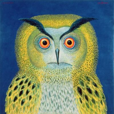 Stock Owl, 1999