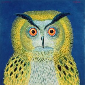 Stock Owl, 1999 by Tamas Galambos
