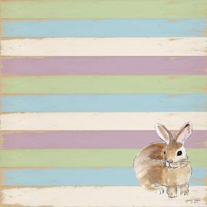 Rabbit by Tammy Kushnir