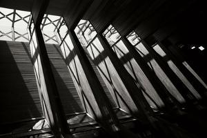 Diamond Ceiling II by Tammy Putman