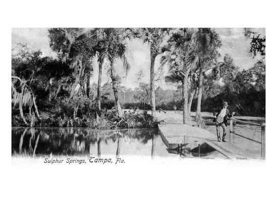Tampa, Florida - View of Sulphur Springs-Lantern Press-Art Print
