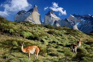 Cuernos Del Paine by Tan Yilmaz