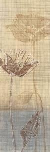Botanical Sketchbook I by Tandi Venter
