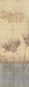 Botanical Sketchbook III by Tandi Venter