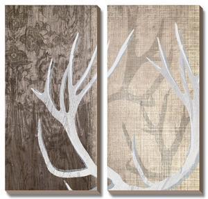 Deer Lodge I by Tandi Venter
