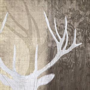 Deer Lodge II by Tandi Venter