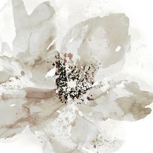 Calyx I by Tania Bello