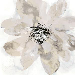 Calyx IV by Tania Bello
