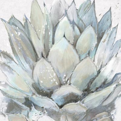 Cereus Echeveria by Tania Bello
