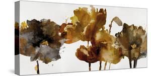 Floral Rhumba II by Tania Bello